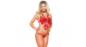 Luxurious Satin Bow Bra Set red